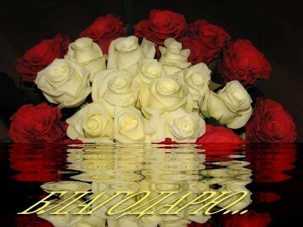 http://bicer.ucoz.ru/_fr/0/0270596.jpg